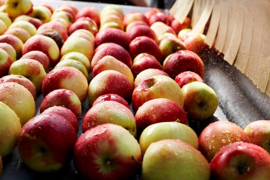 Äpfel von Gölles werden gewaschen